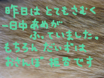 IMG_1820.jpg
