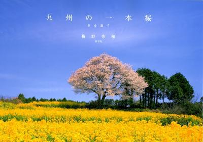 梅野さんの写真集「1本桜」