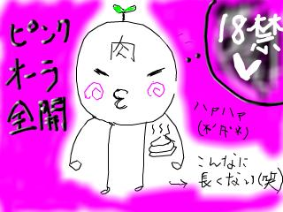 snap_yukineko4_2008123154455.jpg