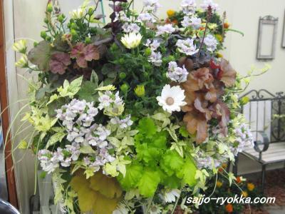 IMG_1494a_convert_20090310184904.jpg