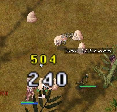 20060601141338.jpg