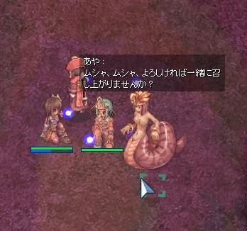 20061230161137.jpg