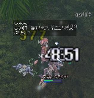 20070206112356.jpg