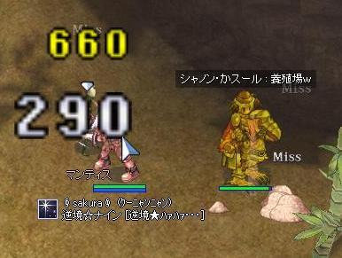 20070405192527.jpg