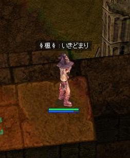 20070423135623.jpg