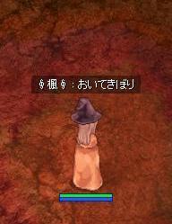 20070430120125.jpg