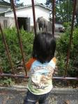 ゾウと一緒