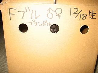 20060421214100.jpg
