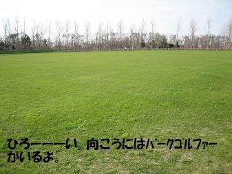 20060513174430.jpg