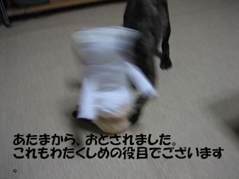 20060528191826.jpg