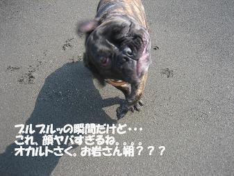 20060730213328.jpg
