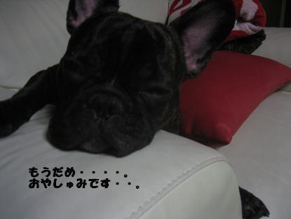おやすみぃ
