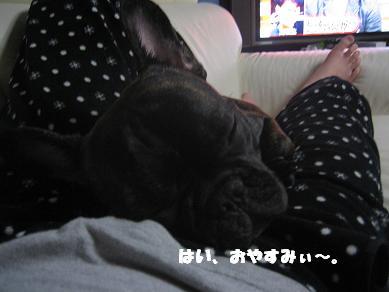 おやすみぃ。