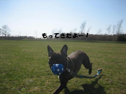 20070430174333.jpg
