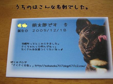20070619125312.jpg