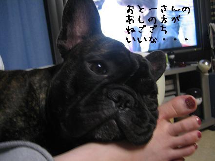 20070628212607.jpg