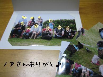 20070806213808.jpg