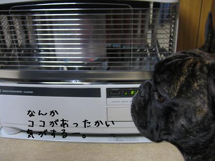20070929203900.jpg