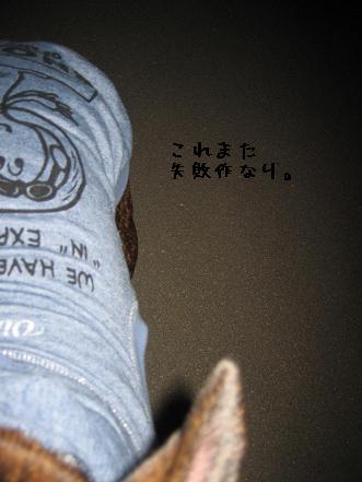 20071022212700.jpg