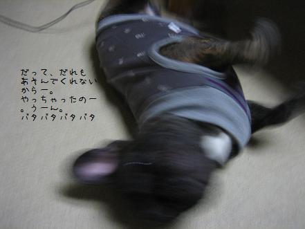 20071129220318.jpg