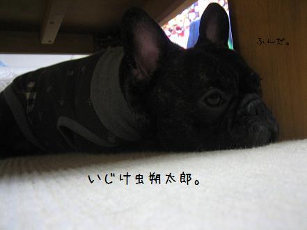 20071129220329.jpg