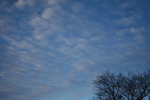 一日中きれいな青空でした