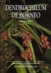 Dendrochilum_of_Borneo.jpg