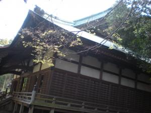横浜磯子散策-07