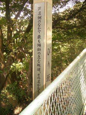 大楠山散策-01