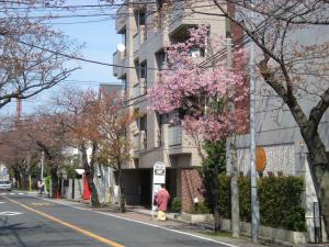 横浜根岸・本牧散策-10