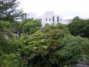 横浜港南・舞岡散策-05