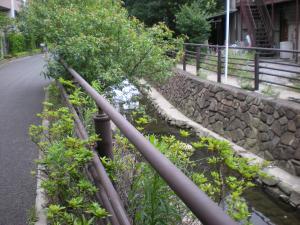 川崎中原・夢見が崎散策-09