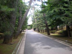 目黒・世田谷散策-08