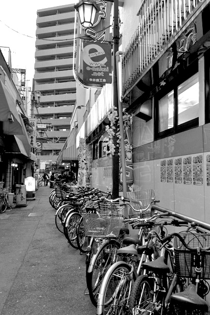 nakai09-03mm.jpg