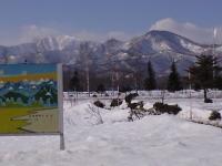 校舎から見た山並み