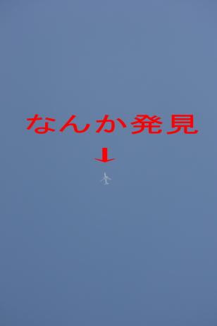 IMG_4868_SP0000.jpg