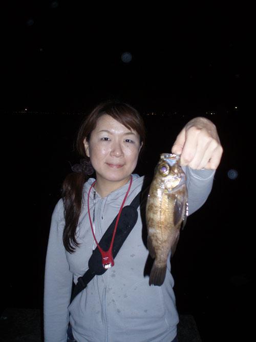久しぶりに釣りやがりました