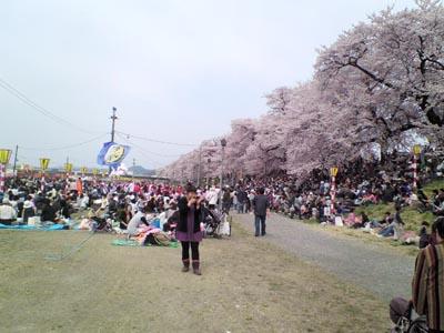 2009412-1.jpg