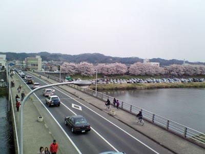 2009412-3.jpg