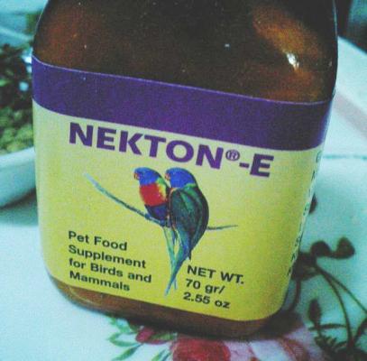 NECTON-Es.jpg