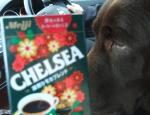 コーヒーchelsea