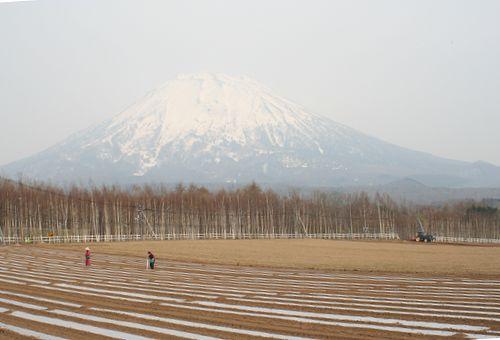 090502-niseko28.jpg