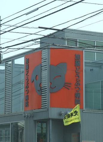 090509-tokoya3.jpg