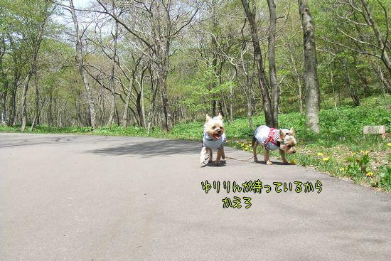 090520-hagi8.jpg