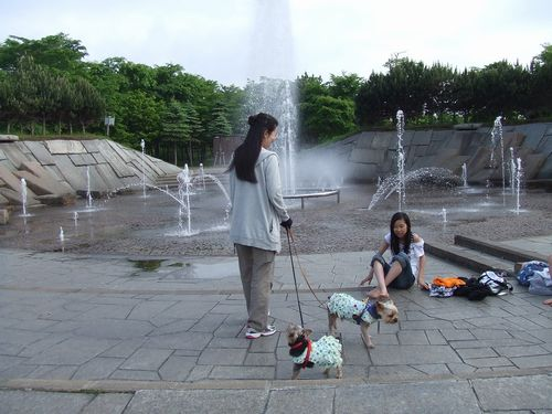 090617-park1.jpg
