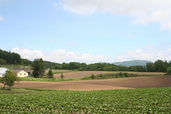 090619-niseko15-1.jpg