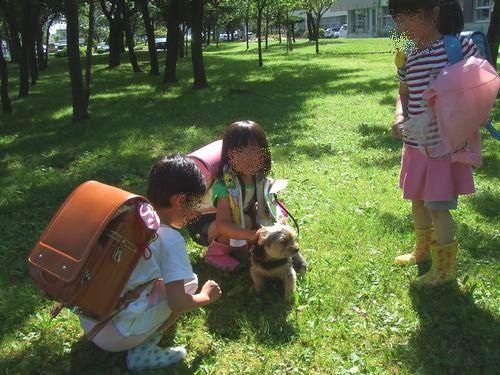 090708-houmukyoku2.jpg
