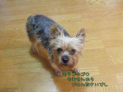 090714-ofuro2.jpg