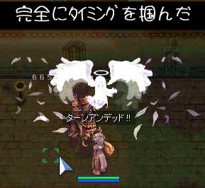blog242.jpg