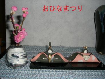 2009_0227_163619-CIMG1636.jpg